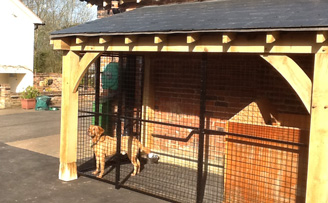 Timber Framed Dog Run Structure with mesh panel infill